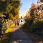 Caminando por la senda y con vistas al Sardinero