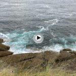 Y ese murmullo que viene del mar