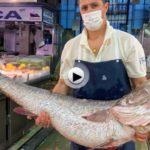 Esto es Santander. El mercado de la Esperanza un viernes a las 8:00 de la mañana