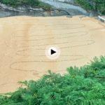 Cuando veas este vídeo sentirás el frescor del verano en Cantabria