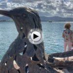 La paloma de la paz tiene vistas al mar